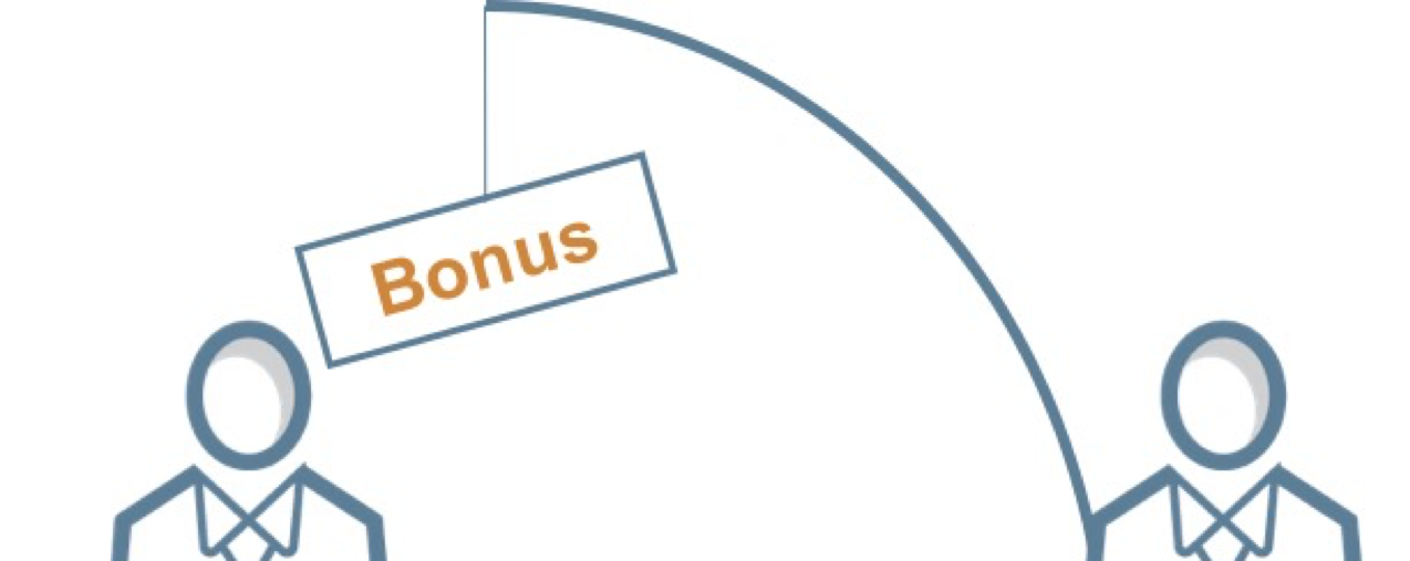 Bonusregeling